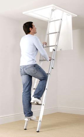 Two Section Loft Ladder